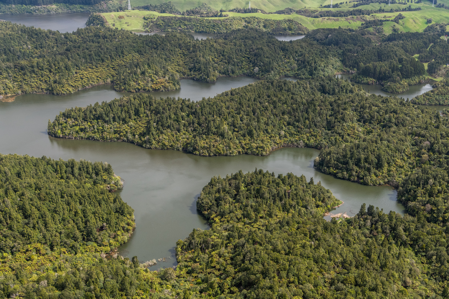 Flying over Lake Rotoehu in the Rotorua region