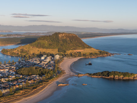LOOKING FOR A HALF DAY TOUR IN TAURANGA?