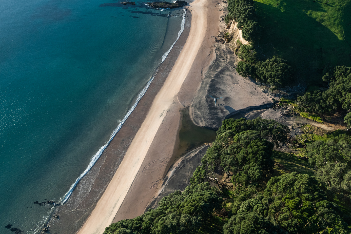 Beautiful Coromandel beach