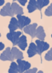 ginko A3 pinkblue.jpg