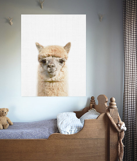 IXXI - Lila and Lola Wall Art - Alpaca