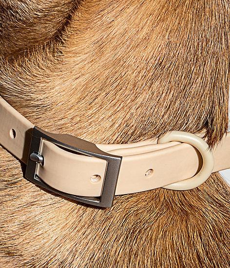 Wild One Dog Collar - Tan