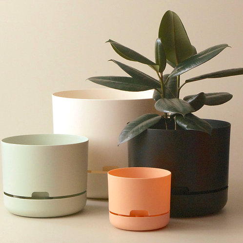 Self-Watering Plant Pots