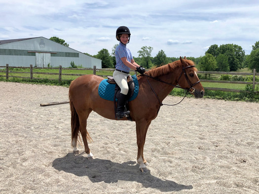 Lesson Pony Logan's Brook New Vernon NJ