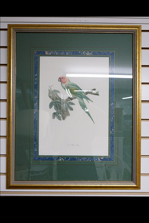 """""""Birds of Paradise""""- Hand Engravings- Old Copper Plates $499.00"""