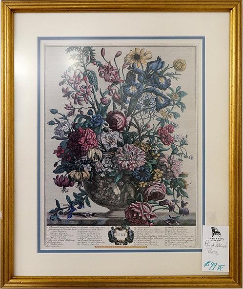 Pair of Botanical Prints $99.00