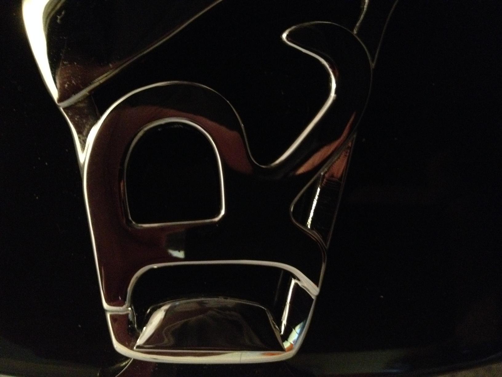 20160219 029 Rickenbacker 12 string