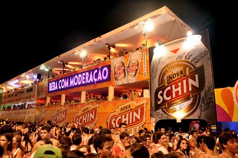 Precaju 2012 Schin (0).jpg