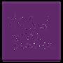 Logo Sud de France.png