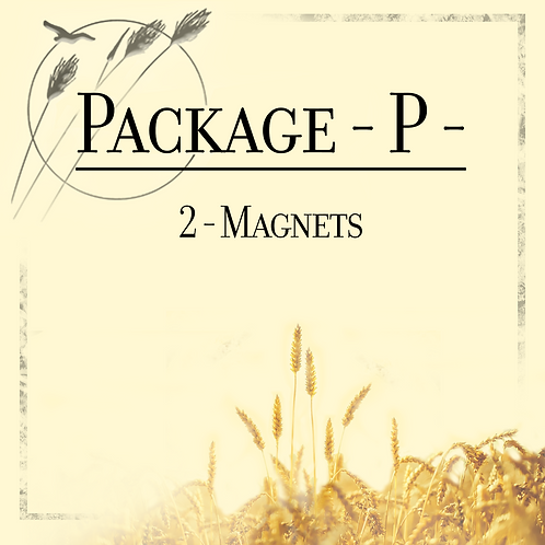 Package P