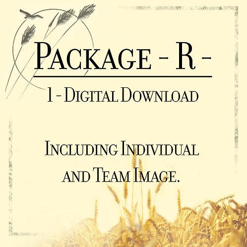 Package R
