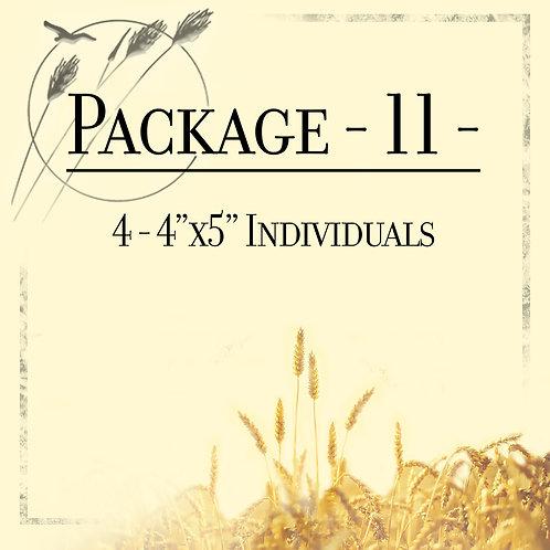 Package 11