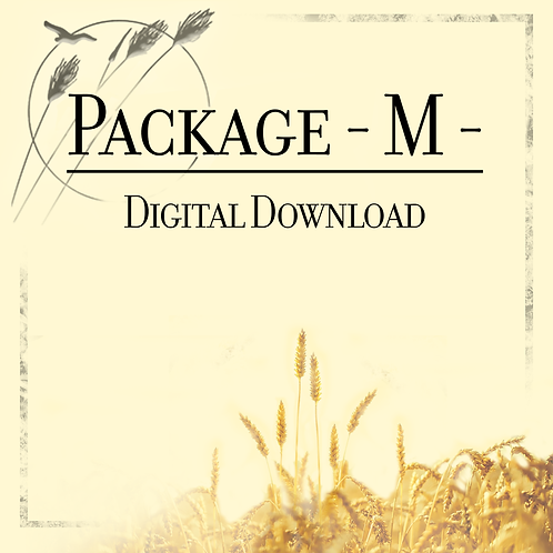 Package M