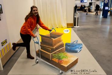 3D schildering IKEA Zwolle