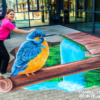 Kingfisher Purmerend