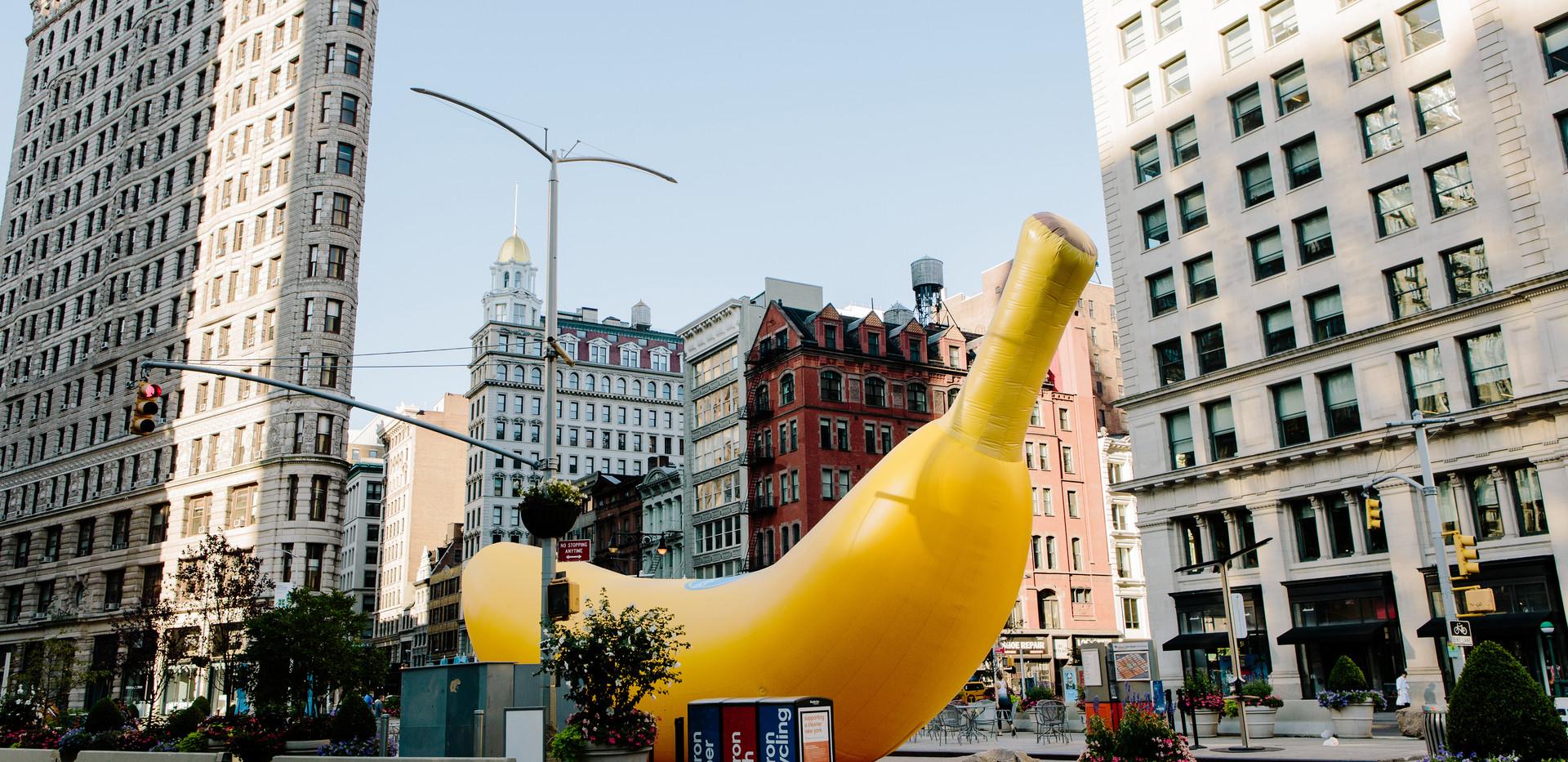 08.20.17_WK__Chiquita_2080.jpg