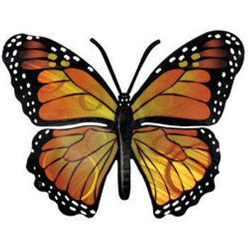 Monarch Butterfly by Next Innovations