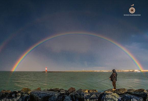 NR 5198 - DH WAR Regenbogen