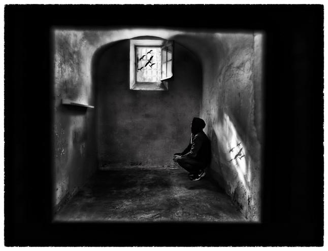 Reve de liberté by Sandra Broccolichi
