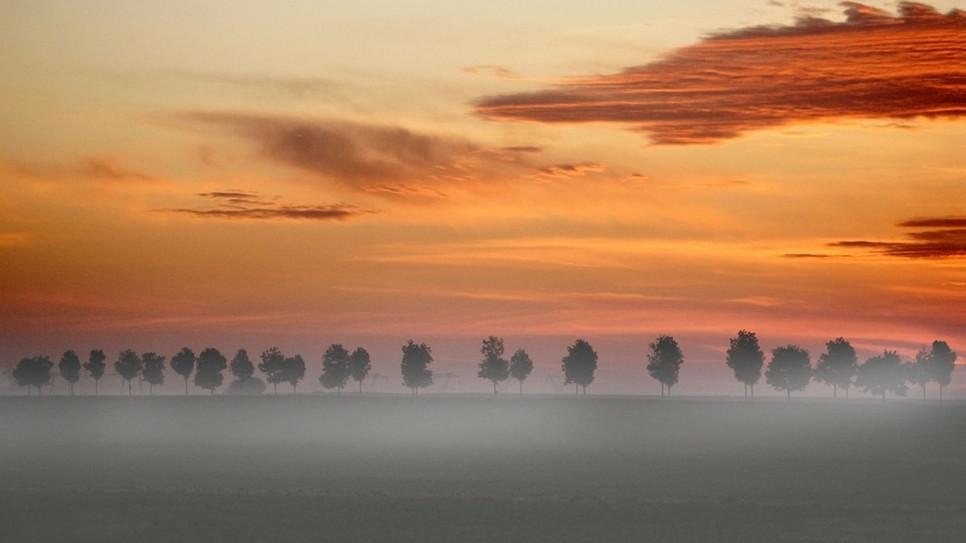 L'aube by Giani Abruzzese