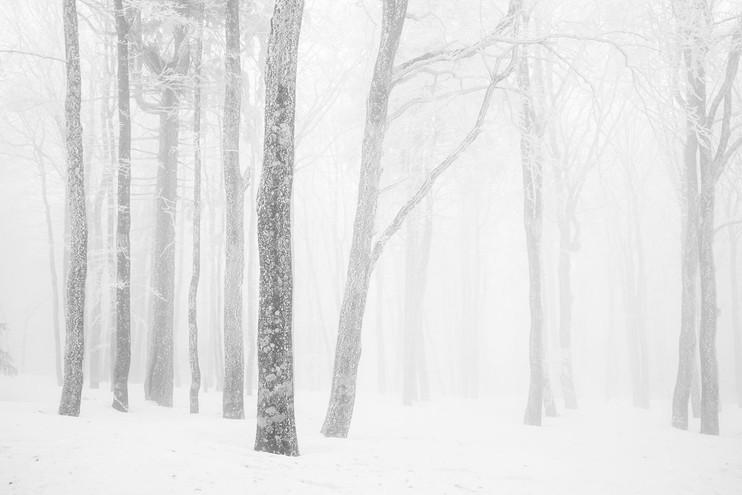 Silence by Bernard Haettel