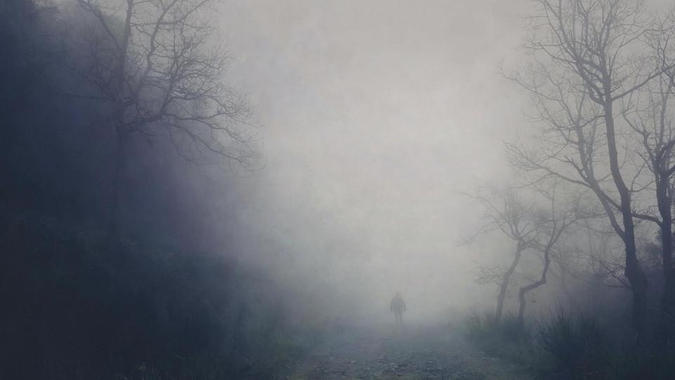 Silhouette by Veronique Xantopoulos