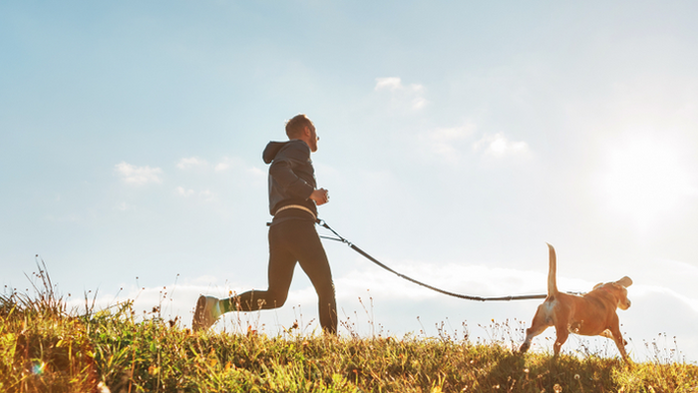Equipment needed to trail run with a dog