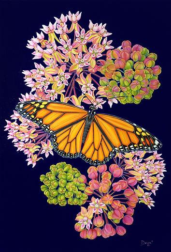 Dependence_Monarch_Milkweed.jpg