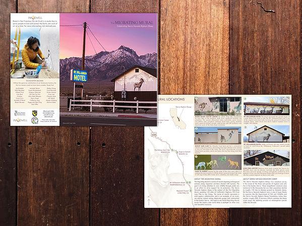 Migrating Mural Brochure.jpg