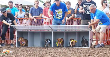 Annual Mooresville Wiener Race