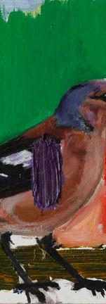 Oiseau Couleurs 1