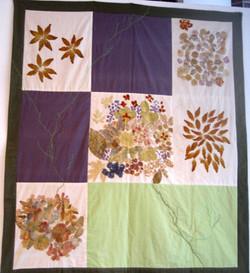 Flower Bed: Nancy Bosomworth