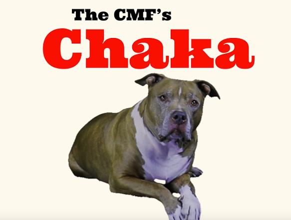 CMFs Chaka.png