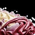 Vanille-Heidelbeere
