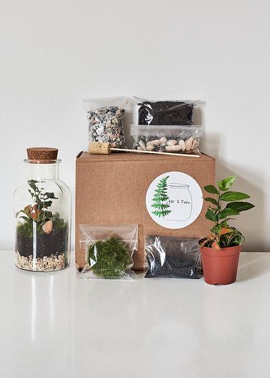 DIY 'Bottle Terrarium' Kit