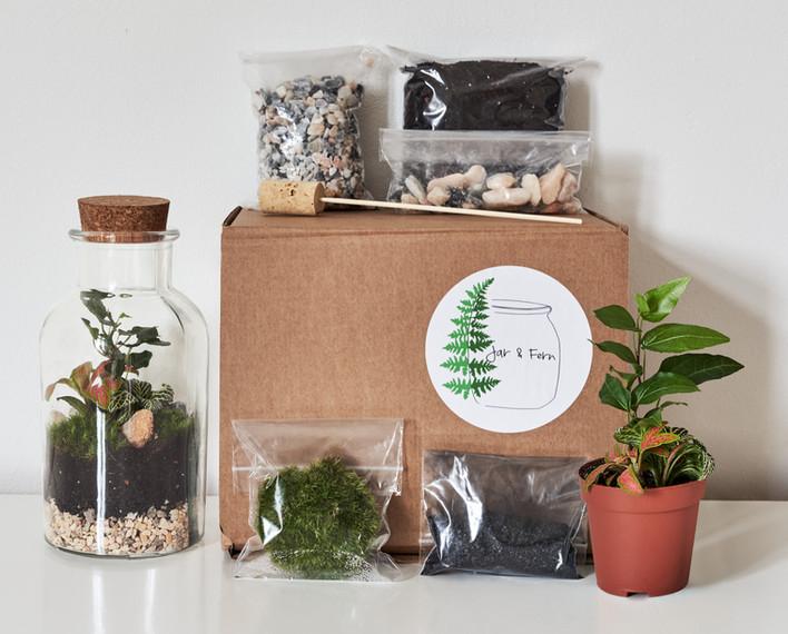 bottle jar terrarium
