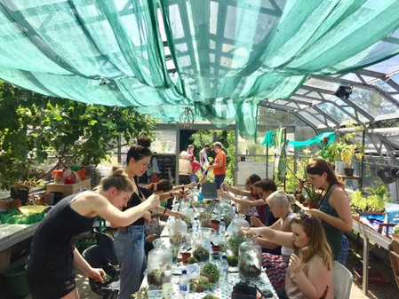 National growing for wellbeing week: Workshop discount + charitable donation offer
