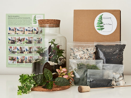 DIY 'Corked Jar' Terrarium Kit - With instructional video