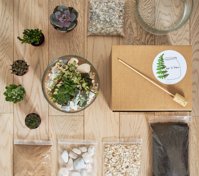 Succulent terrarium kit.jpg