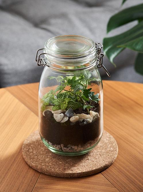 Jar Terrarium Workshop Gift Voucher *** FOR FUTURE PHYSICAL WORKSHOPS ***