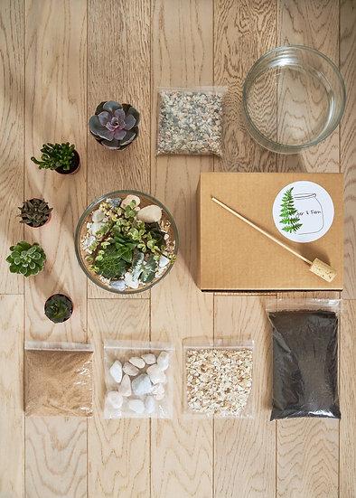DIY 'Succulent Terrarium' Kit - With instructional guide STC