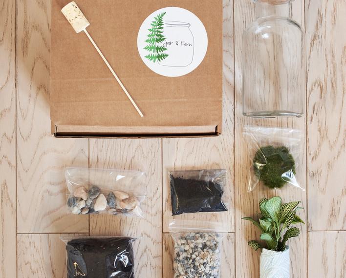 Small terrarium kit