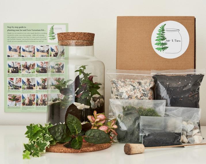 Jar and Fern Terrarium kit
