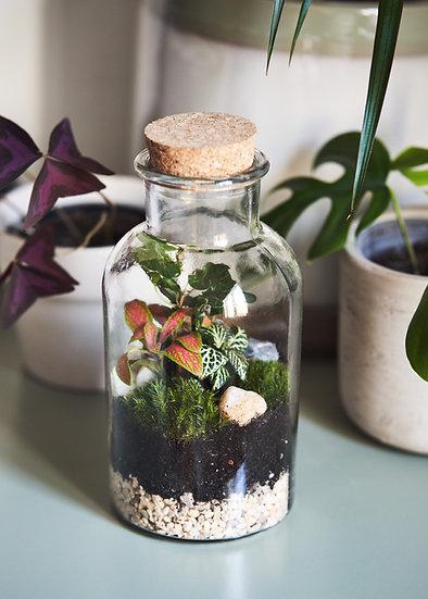 Bottle Terrarium Workshop Gift Voucher *** FOR IN-PERSON  WORKSHOPS ***