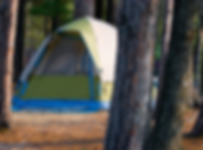Tent Site in a Campground