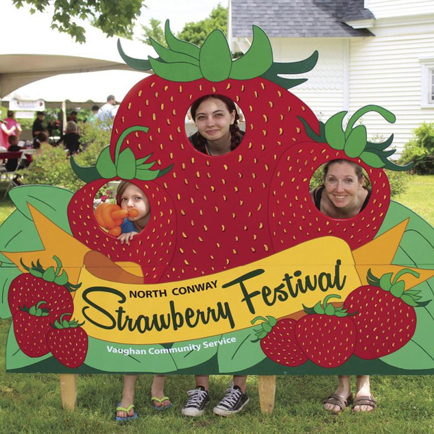 Vaughan Strawberry 4.jpg