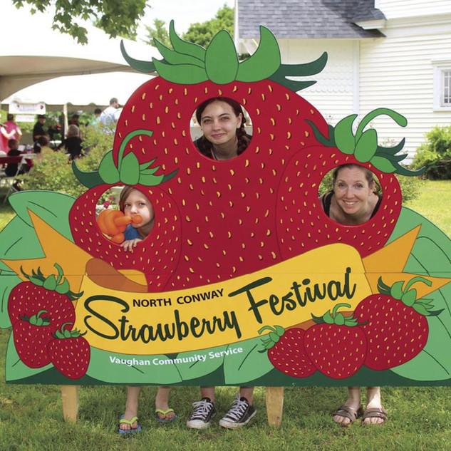 Vaughan Strawberry 4.jpg