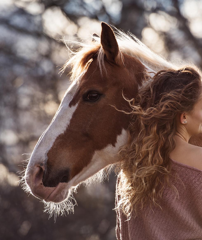 Susanne Brunnmeier Pferd Mensch Fotografie Paint