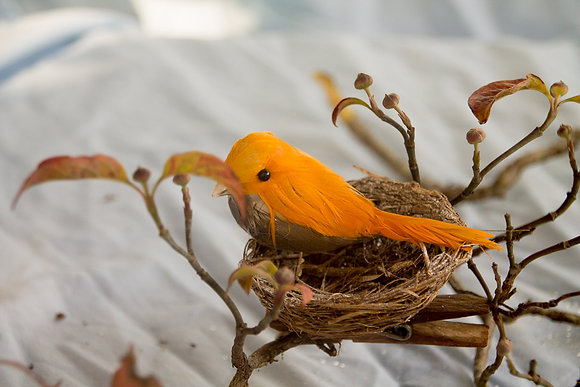 Bird Nest Ornament