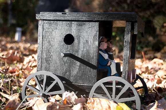 Amish Buggy Bird House